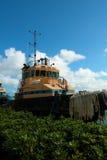 σκάφος κίτρινο Στοκ Εικόνες