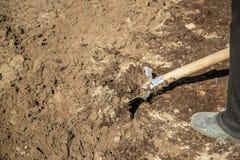 Σκάψτε ένα φτυάρι κήπων Κηπουρική Εκλεκτική εστίαση στοκ φωτογραφίες