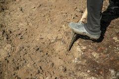 Σκάψτε ένα φτυάρι κήπων Κηπουρική Εκλεκτική εστίαση στοκ εικόνες με δικαίωμα ελεύθερης χρήσης