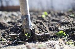 Σκάψτε τον κήπο στοκ εικόνες με δικαίωμα ελεύθερης χρήσης