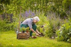 Σκάψτε το άτομο κήπων Στοκ εικόνες με δικαίωμα ελεύθερης χρήσης
