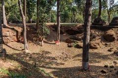 Σκάψτε χαρακτηρισμένα τα περιοχή δέντρα κοντά στην επαρχία Wat Pra Khaeo Kamphaeng Phet, Ταϊλάνδη στοκ εικόνα
