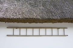 Σκάλα από την πλευρά σπιτιών στοκ φωτογραφίες