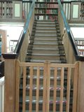 Σκάλα βιβλιοθήκης Στοκ Εικόνες