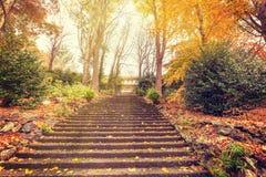 Σκάλα που οδηγεί σε ένα μέγαρο με τα χρυσά δέντρα Στοκ Εικόνες