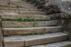 Σκάλα στην προσφάτως ανευρεθείσα Gap Στοκ εικόνες με δικαίωμα ελεύθερης χρήσης