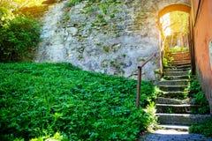 Σκάλα στο αρχαίο προαύλιο στοκ φωτογραφίες με δικαίωμα ελεύθερης χρήσης