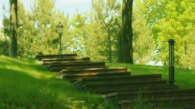Σκάλα στο πάρκο στην άνοιξη Βήματα στο πάρκο στο πράσινο δάσος φιλμ μικρού μήκους