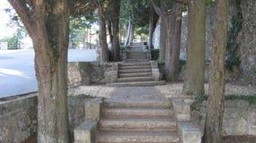 Σκάλες Στοκ Φωτογραφίες