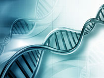 σκέλη DNA Στοκ φωτογραφία με δικαίωμα ελεύθερης χρήσης