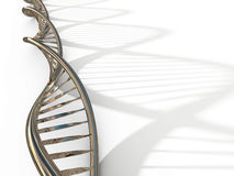 σκέλος DNA απεικόνιση αποθεμάτων