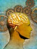 σκέψη εγκεφάλου Στοκ εικόνες με δικαίωμα ελεύθερης χρήσης