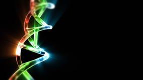 Σκέλος DNA, μήκος σε πόδηα αποθεμάτων απεικόνιση αποθεμάτων