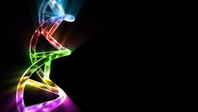 Σκέλος DNA, μήκος σε πόδηα αποθεμάτων διανυσματική απεικόνιση