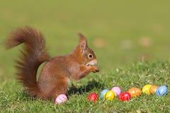 σκίουρος αυγών Πάσχας Στοκ φωτογραφία με δικαίωμα ελεύθερης χρήσης