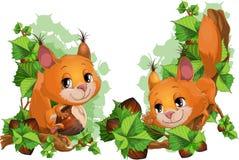 Σκίουρος και nutlets Στοκ εικόνα με δικαίωμα ελεύθερης χρήσης