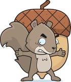 σκίουρος καρυδιών απεικόνιση αποθεμάτων