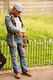 Σκίουρος πάρκων του ST james londyn Στοκ Φωτογραφία