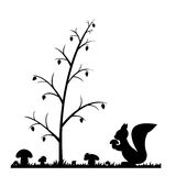 Σκίουρος στα δάση. διανυσματική απεικόνιση