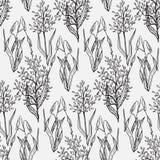 Σκίτσα συγκομιδών δημητριακών Στοκ εικόνες με δικαίωμα ελεύθερης χρήσης