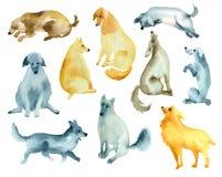Σκίτσα των αστείων σκυλιών Στοκ Εικόνες