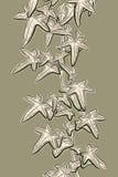 Σκίτσο κισσών Στοκ εικόνα με δικαίωμα ελεύθερης χρήσης