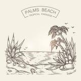 Σκίτσο μιας παραλίας παραλιών Διανυσματική σκιαγραφία ακροθαλασσιών με την άμμο, τους φοίνικες και τις πέτρες Στοκ Φωτογραφίες