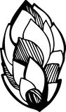 Σκίτσο μιας φυτικής διακόσμησης Στοκ Εικόνες