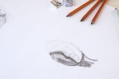 Σκίτσο ξυλάνθρακα Στοκ Εικόνα