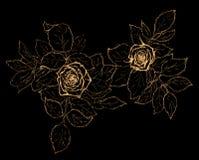 Σκίτσο λουλουδιών στο Μαύρο Στοκ Εικόνα