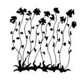 Σκίτσο των μακριών λουλουδιών διανυσματική απεικόνιση