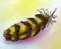 Σκίτσο φτερών αετών Στοκ εικόνες με δικαίωμα ελεύθερης χρήσης
