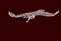 Σκίτσο χεριών ενός αετού κατά την πτήση Στοκ Εικόνα