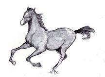σκίτσο 2 αλόγων Στοκ φωτογραφία με δικαίωμα ελεύθερης χρήσης