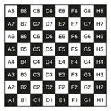 Σκακιέρα τις συντεταγμένες, που απομονώνονται με στο λευκό διανυσματική απεικόνιση