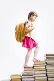 σκαλοπάτια βιβλίων Στοκ Φωτογραφίες