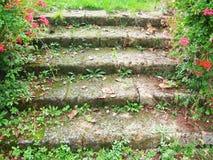 σκαλοπάτια κήπων Στοκ Φωτογραφίες