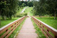 σκαλοπάτια πάρκων Στοκ Εικόνες