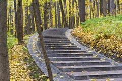 Σκαλοπάτια που καλύπτονται με τα ζωηρόχρωμα φύλλα πτώσης Στοκ εικόνα με δικαίωμα ελεύθερης χρήσης