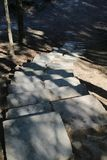 Σκαλοπάτια πρωτόγονα πετρών στο δάσος στοκ φωτογραφία