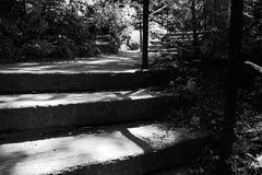 Σκαλοπάτια στο πάρκο σε γραπτό Στοκ Εικόνα