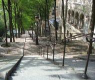 σκαλοπάτια του Παρισιού Στοκ Φωτογραφίες