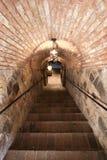σκαλοπάτια τούβλου Στοκ Εικόνα
