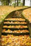 σκαλοπάτια φύλλων φθινο&pi Στοκ Εικόνες