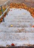 σκαλοπάτια φύλλων φθινο&pi Στοκ εικόνες με δικαίωμα ελεύθερης χρήσης
