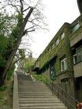 Σκαλοπάτι με τον πράσινο τοίχο Στοκ φωτογραφία με δικαίωμα ελεύθερης χρήσης