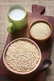 Σκαμένα Quinoa δημητριακά Στοκ εικόνες με δικαίωμα ελεύθερης χρήσης