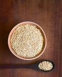 Σκαμένα Quinoa δημητριακά Στοκ Εικόνα