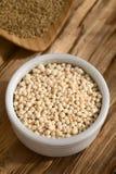 Σκαμένο Quinoa Στοκ Εικόνα