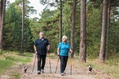 Σκανδιναβικό περπατώντας ανώτερο ζεύγος με τα σκυλιά στοκ φωτογραφία